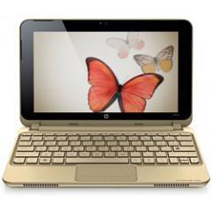 Ноутбук HP Mini 210-1099EZ Vivienne Tam