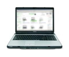 Ноутбук Toshiba Satellite L300D